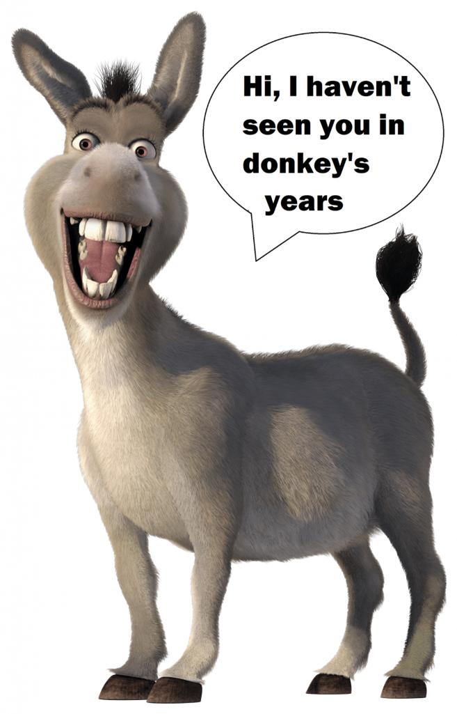 'Les Idiomes' que vous n'avez pas utilisés dans les années d'âne.