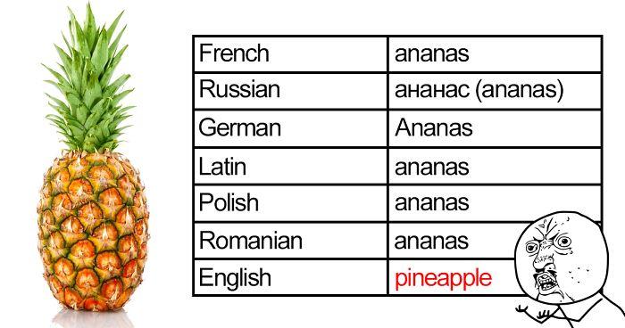 Hésitant de vous exprimer en anglais? Abonnez-vous pour apprendre des expressions de base et améliorer votre anglais avec les professeurs.